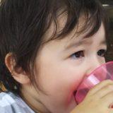 息子・2歳7か月の日本語・英語の状態